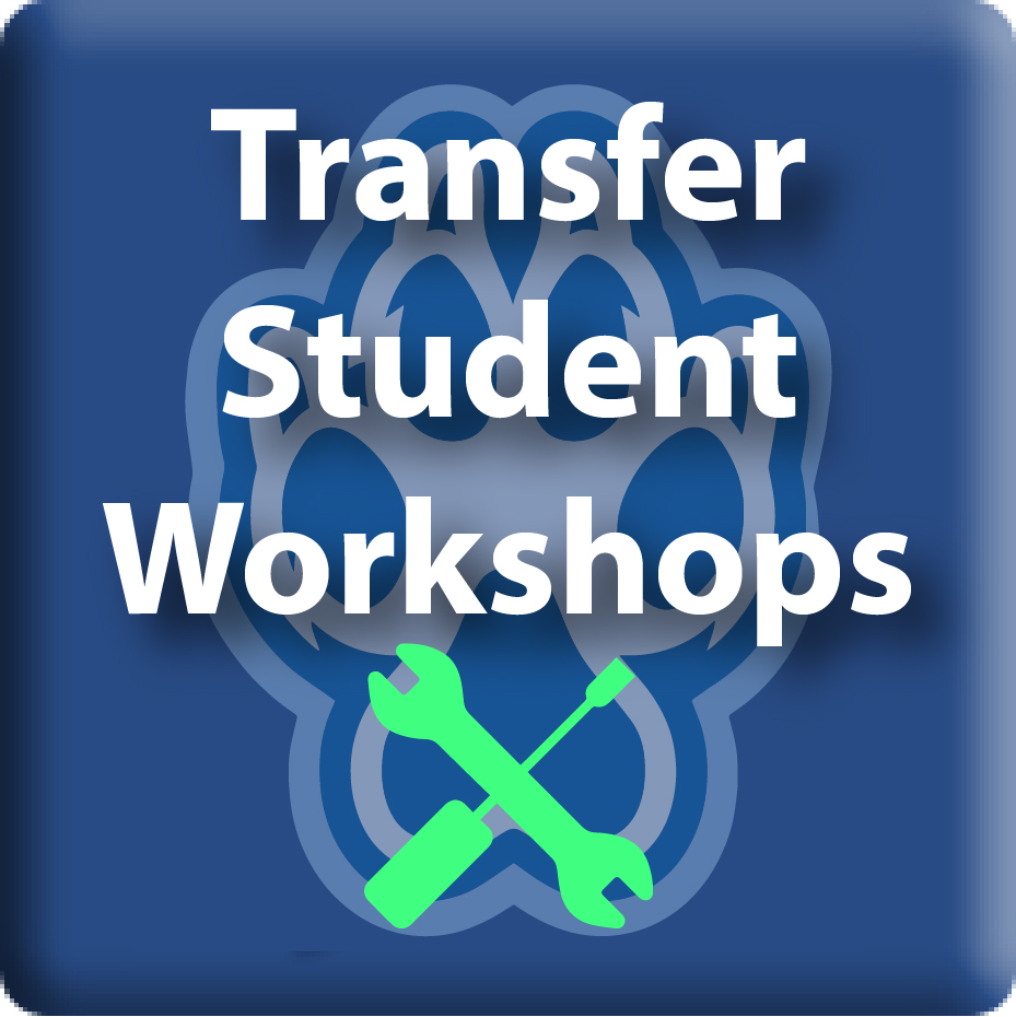 Transfer Workshops